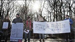 إعدام ماريوس أثار استياء منظمات حقوقية