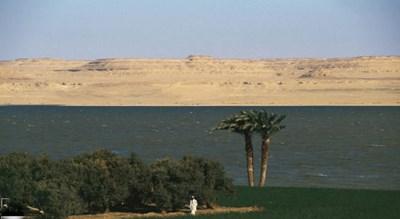 الفيوم (مصر)