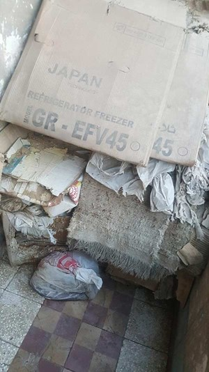 بالصور.. لغز مسنة مصرية عثر بشقتها على مقبرة قطط مذبوحة