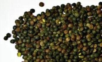 الأمراض 842068-1.jpg?crop=(42,0,391,214)&cropxunits=450&cropyunits=214